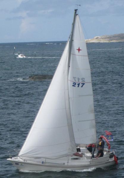 albin 78 sailguidecom